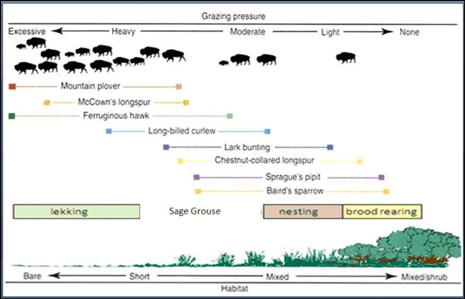 grazing-pressure2